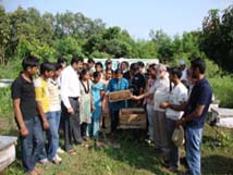 Beekeeping Training & Research